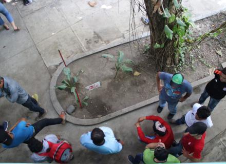 Vista cenital de un grupo de personas reunidas en un patio abierto